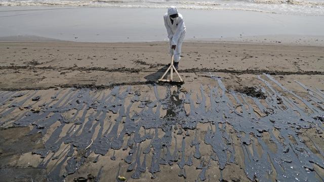 Petugas Oil Spill Combat Team (OSCT) membersihkan pantai yang kotor akibat tumpahan minyak (Oil Spill) yang tercecer di Pesisir Pantai Sedari, Karawang, Jawa Barat, Kamis (1/8). Foto: Aditia Noviansyah/kumparan