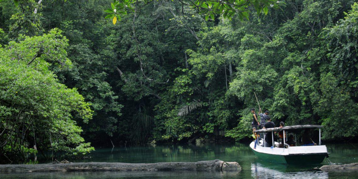 Hulu Sungai Biduk-biduk di Kawasan Karst Sangkulirang Mangkaliat. Foto: Very